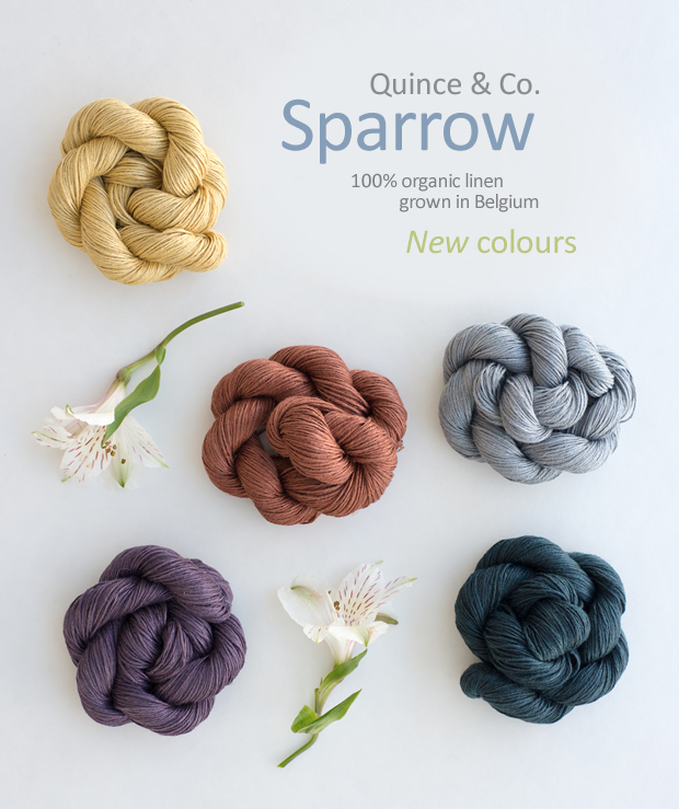 Sparrow_new_colours_spring2015